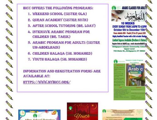 BICC Educational Program