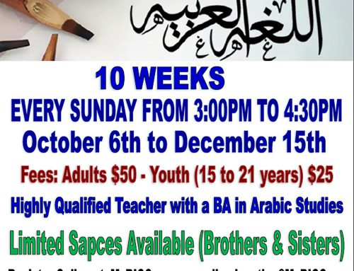Arabic Class for Adults